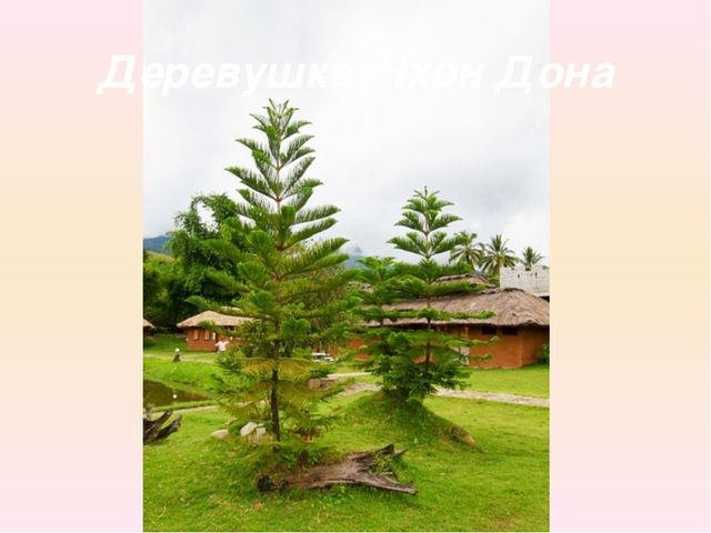 Деревушка Чхон Дона