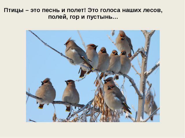 Птицы – это песнь и полет! Это голоса наших лесов, полей, гор и пустынь…