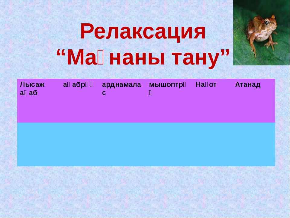 "Релаксация ""Мағнаны тану"" Лысажақаб ақабрұқ арднамалас мышоптрұқ Нағот Атанад"