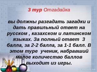 3 тур Отгадайка вы должны разгадать загадки и дать правильный ответ на русско