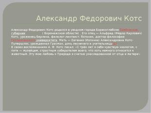 Александр Федорович Котс Александр Федорович Котс родился в уездном городе Бо