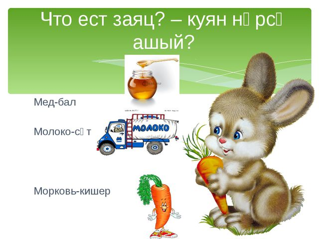Мед-бал Молоко-сөт Морковь-кишер Что ест заяц? – куян нәрсә ашый?