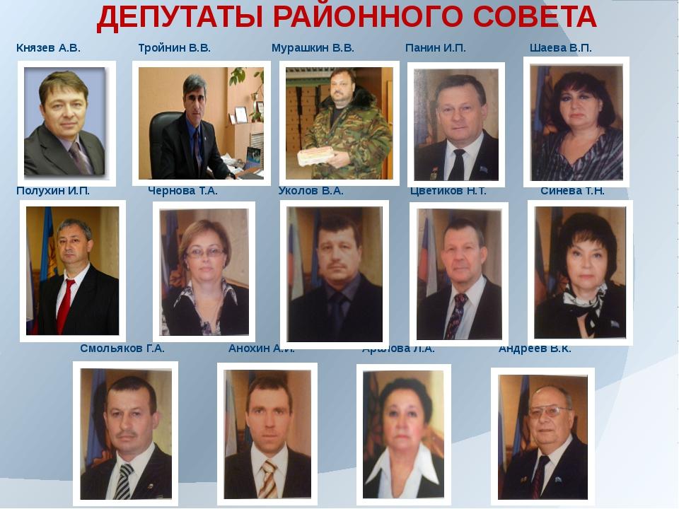 ДЕПУТАТЫ РАЙОННОГО СОВЕТА Князев А.В. Тройнин В.В. Мурашкин В.В. Панин И.П. Ш...
