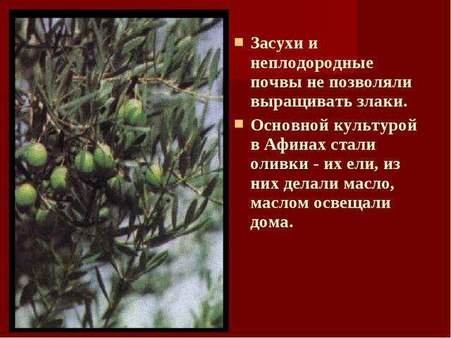 Засухи и неплодородные почвы не позволяли выращивать злаки. Основной культуро...