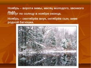 Ноябрь – ворота зимы, месяц молодого, звонкого льда. Плачут по солнцу в ноябр