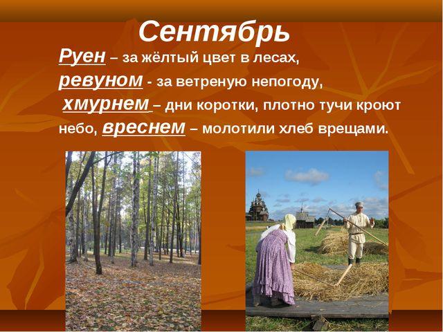 Сентябрь Руен – за жёлтый цвет в лесах, ревуном - за ветреную непогоду, хмурн...