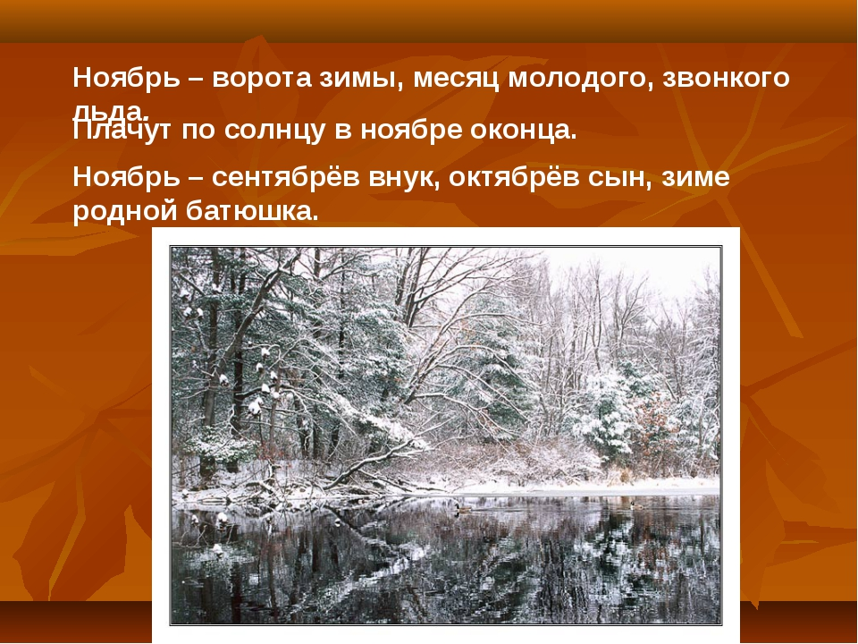 Ноябрь – ворота зимы, месяц молодого, звонкого льда. Плачут по солнцу в ноябр...