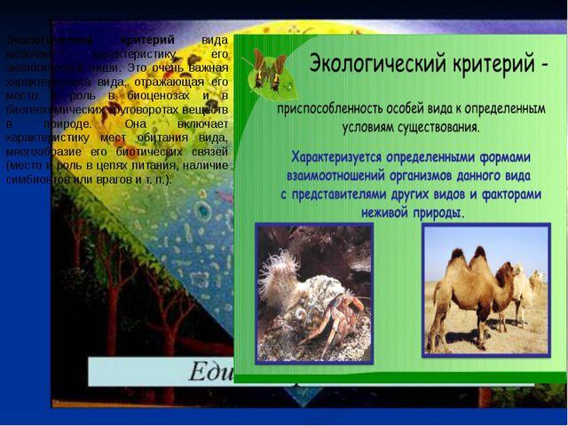 Экологический критерий вида включает характеристику его экологической ниши. Э...