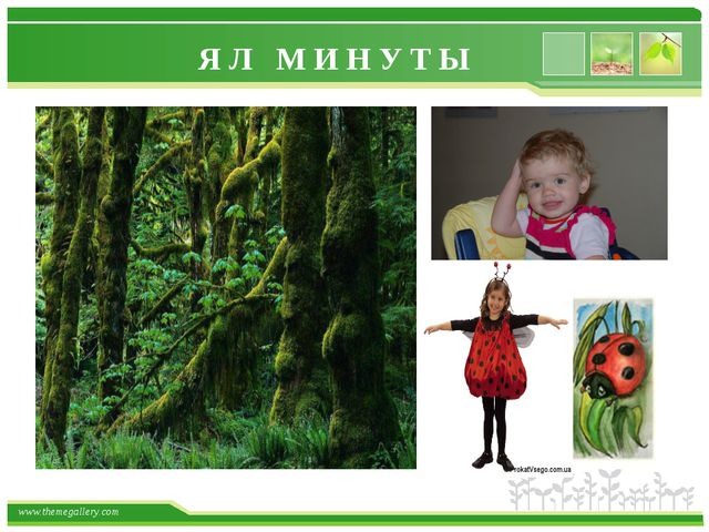 Я Л М И Н У Т Ы www.themegallery.com