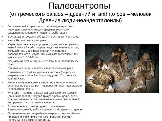 Палеоантропы (от греческого palaios – древний и anthr,o pos – человек. Древни...