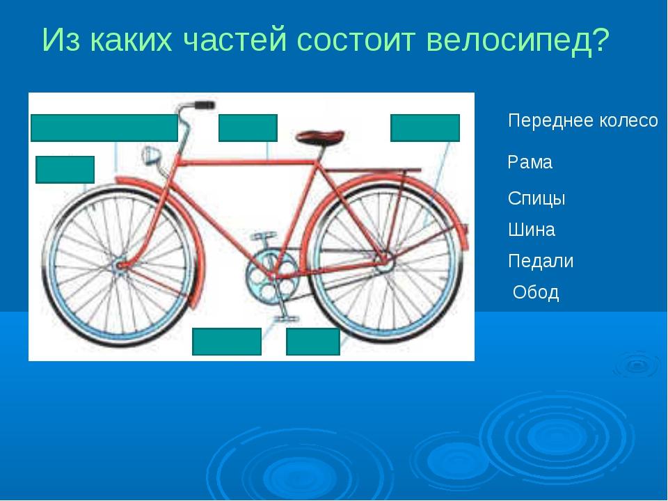Из каких частей состоит велосипед? Переднее колесо Рама Спицы Шина Педали Обод