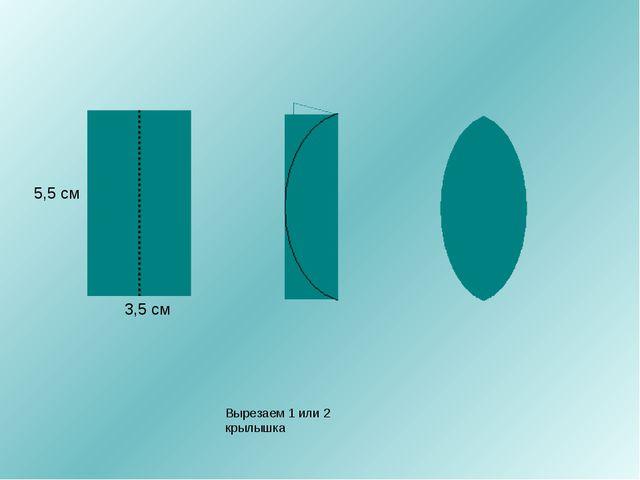 3,5 см 5,5 см Вырезаем 1 или 2 крылышка
