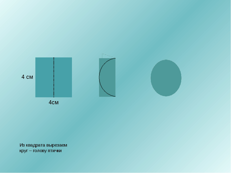 4см 4 см Из квадрата вырезаем круг – голову птички