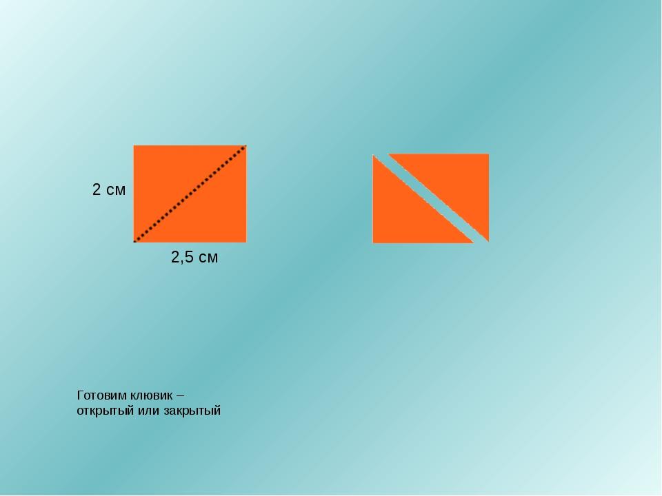 2,5 см 2 см Готовим клювик – открытый или закрытый
