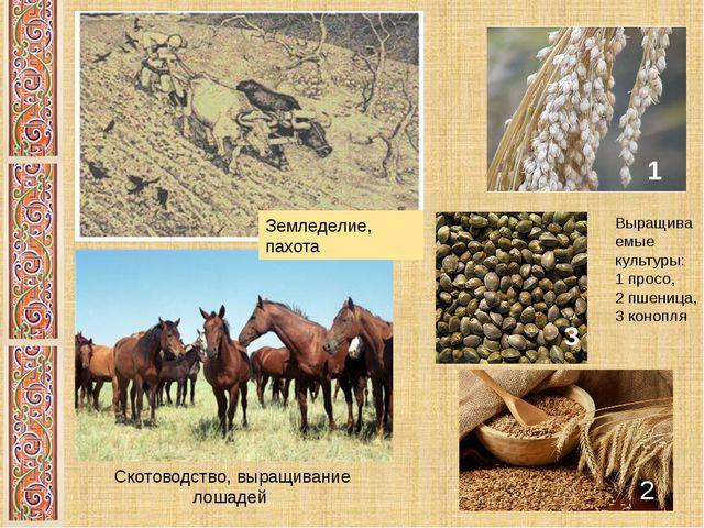 Земледелие, пахота Выращиваемые культуры: 1 просо, 2 пшеница, 3 конопля 1 3 3...