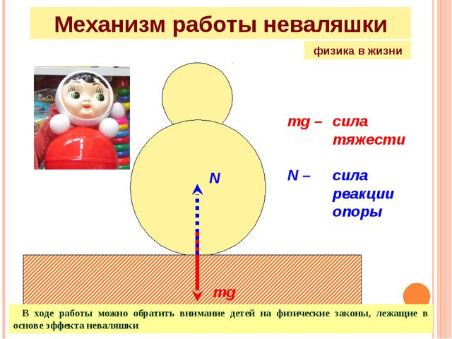 mg N mg – сила тяжести N – сила реакции опоры Механизм работы неваляшки...