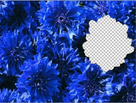 hello_html_m3b3f087d.jpg