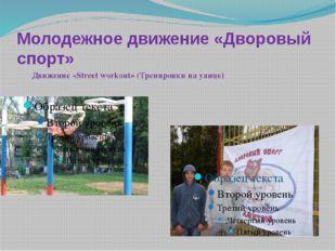 Молодежное движение «Дворовый спорт» Движение «Street workout» (Тренировки на
