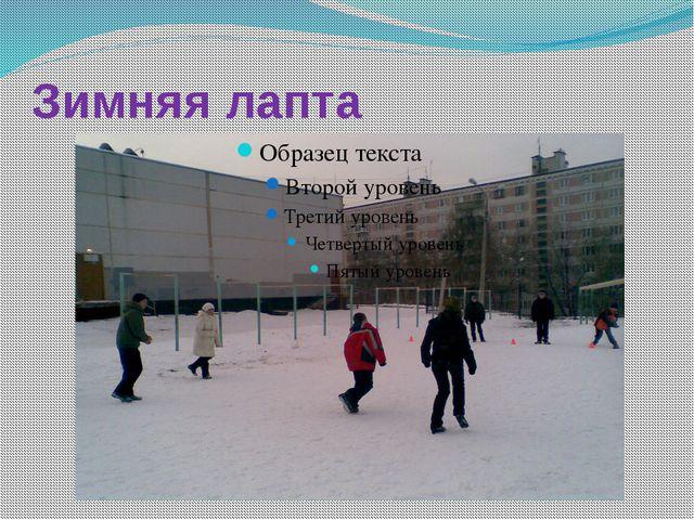 Зимняя лапта