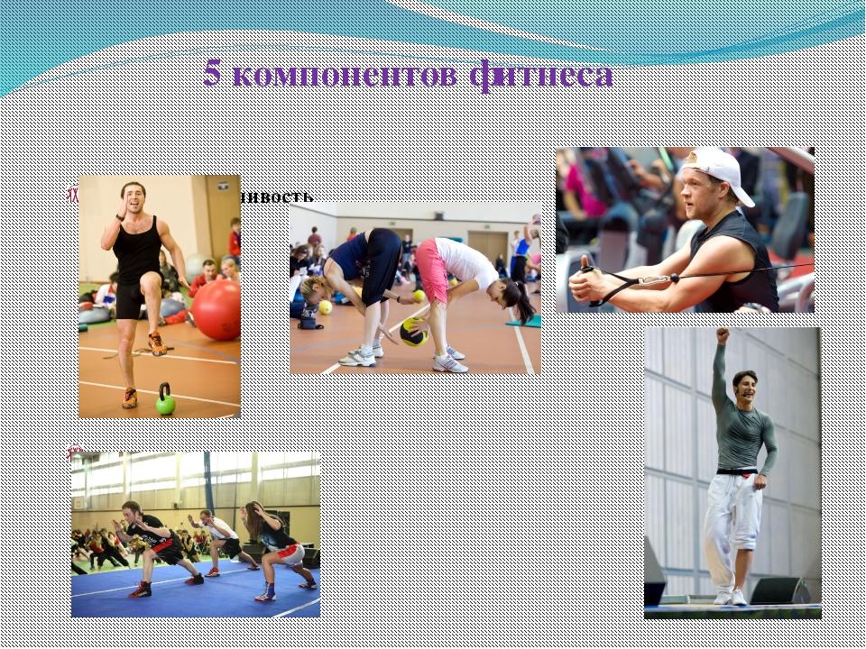 5 компонентов фитнеса сердечнососудистая и кардиореспираторная выносливость...