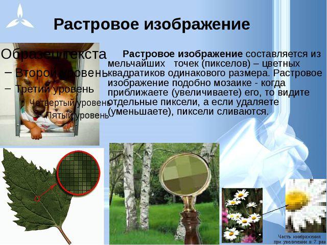 Растровое изображение Растровое изображение составляется из мельчайших точек...