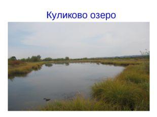 Куликово озеро