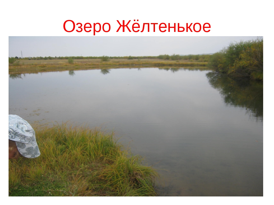 Озеро Жёлтенькое