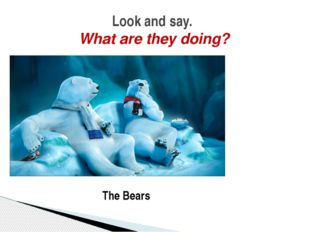 Look and say. What are they doing? The Bears