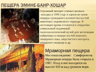 Огромный интерес ученых вызвала находка в 1996 году в одном из залов пещеры г