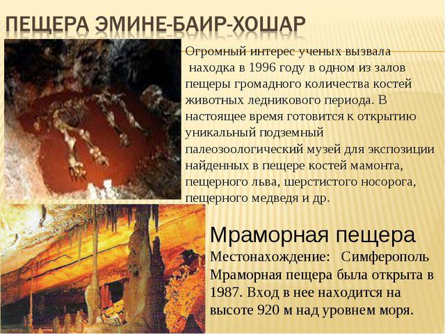 Огромный интерес ученых вызвала находка в 1996 году в одном из залов пещеры г...