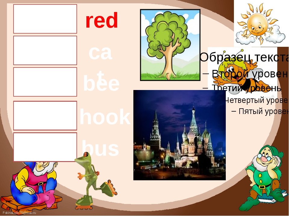 [e] [æ] [i:] [u] [Λ] bus hook bee cat red FokinaLida.75@mail.ru