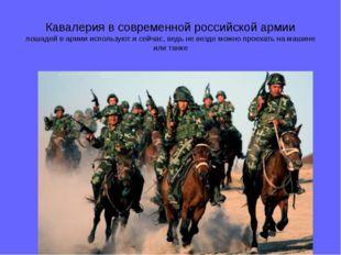 Кавалерия в современной российской армии лошадей в армии используют и сейчас,