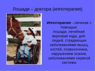 Лошади – доктора (иппотерапия) Иппотерапия – лечение с помощью лошади, лечебн