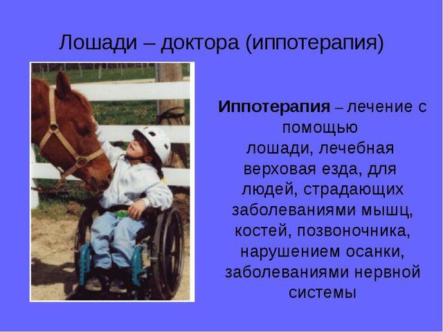 Лошади – доктора (иппотерапия) Иппотерапия – лечение с помощью лошади, лечебн...