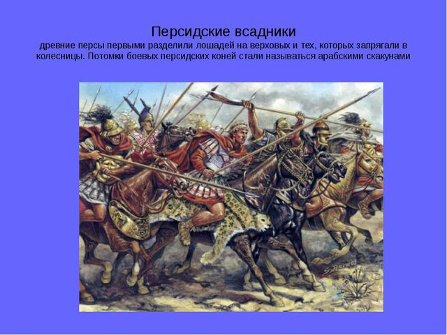 Персидские всадники древние персы первыми разделили лошадей на верховых и тех...