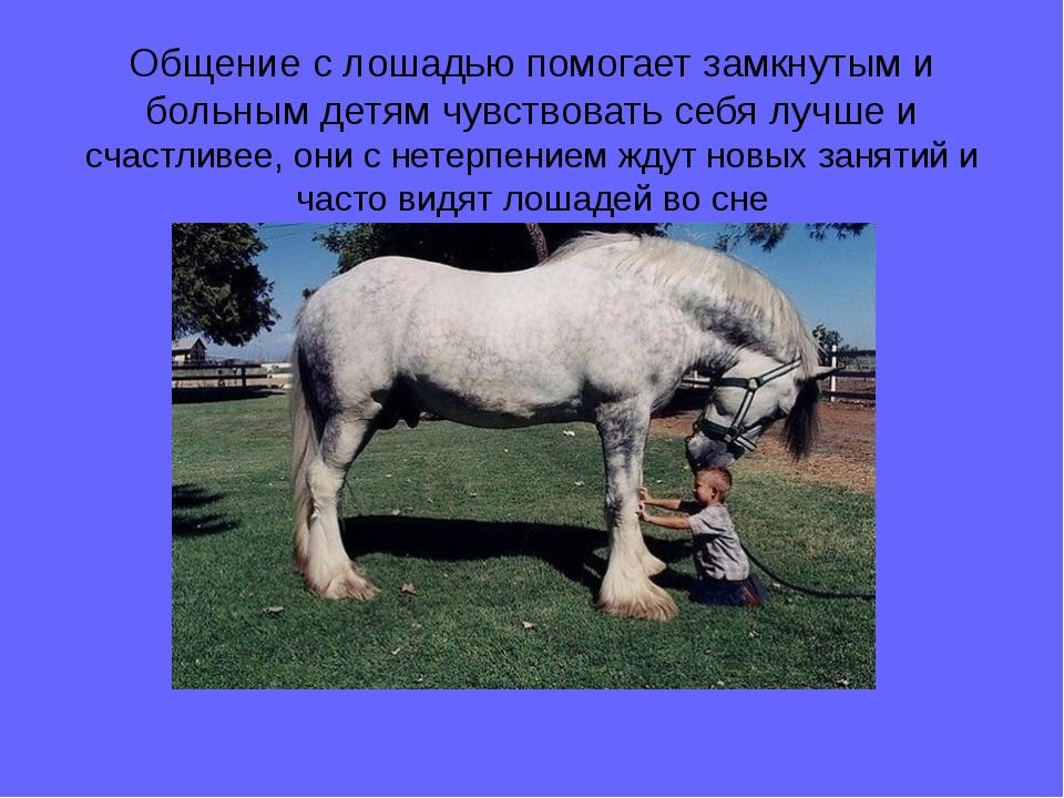 Общение с лошадью помогает замкнутым и больным детям чувствовать себя лучше и...