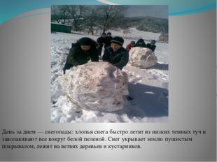День за днем — снегопады: хлопья снега быстро летят из низких темных туч и за