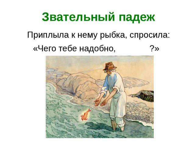 Звательный падеж Приплыла к нему рыбка, спросила: «Чего тебе надобно, ?» старче