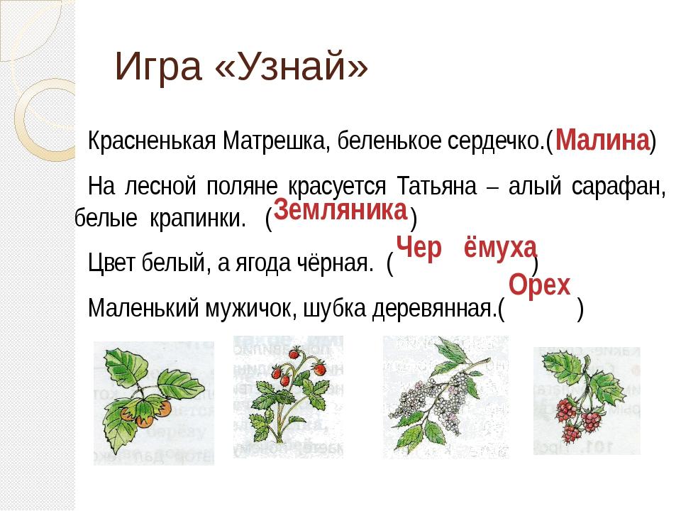 Игра «Узнай» Красненькая Матрешка, беленькое сердечко.( ) На лесной поляне кр...