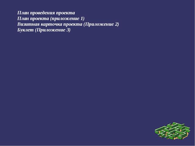 План проведения проекта План проекта (приложение 1) Визитная карточка проекта...