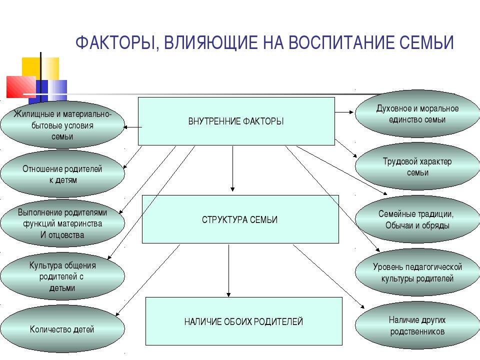 Факторы, влияющие на характер адаптации: отсутствие в семье режима, совпадающего с режимом д/с