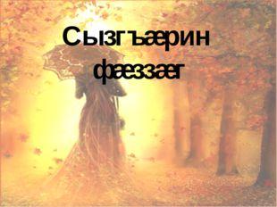 Сызгъæрин фæззæг