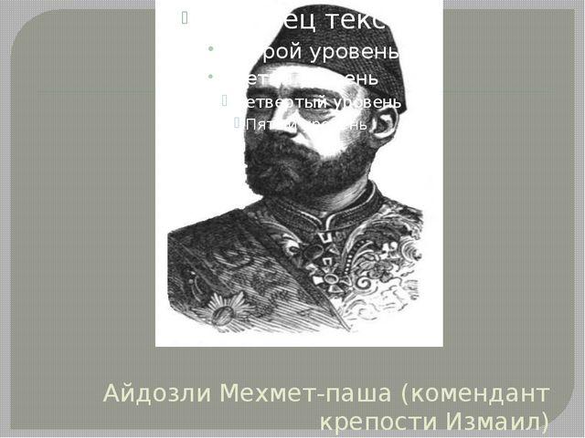 Айдозли Мехмет-паша (комендант крепости Измаил)