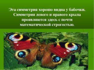 Эта симметрия хорошо видна у бабочки. Симметрия левого и правого крыла проявл