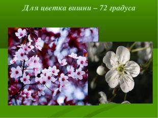 Для цветка вишни – 72 градуса