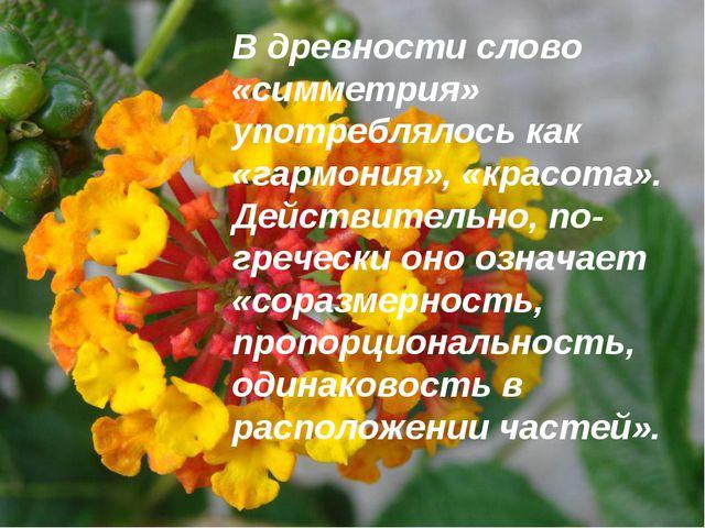 В древности слово «симметрия» употреблялось как «гармония», «красота». Дейст...