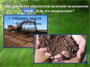 На дне болот образуется полезное ископаемое - .Как его используют? торф