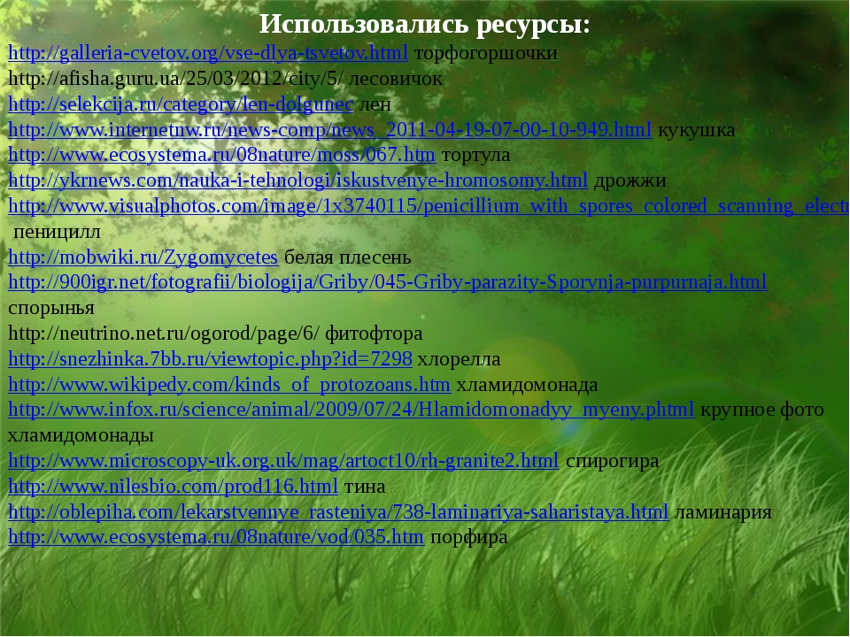 Использовались ресурсы: http://galleria-cvetov.org/vse-dlya-tsvetov.html торф...