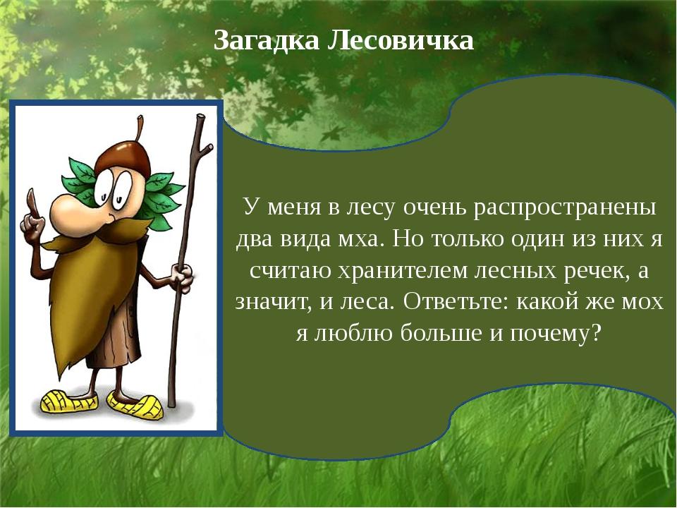 У меня в лесу очень распространены два вида мха. Но только один из них я счит...