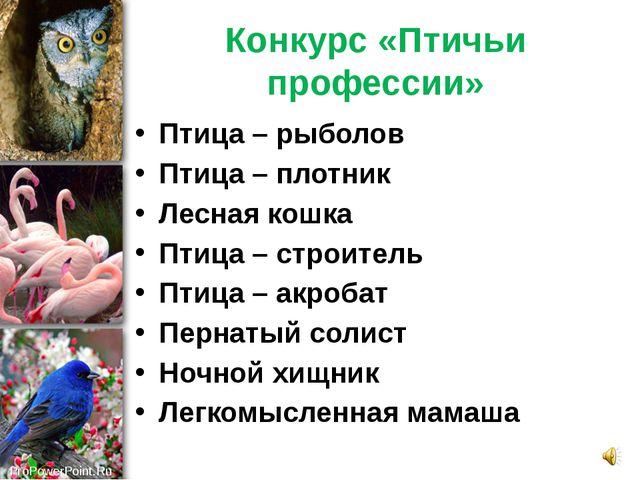 Конкурс «Птичьи профессии» Птица – рыболов Птица – плотник Лесная кошка Птица...